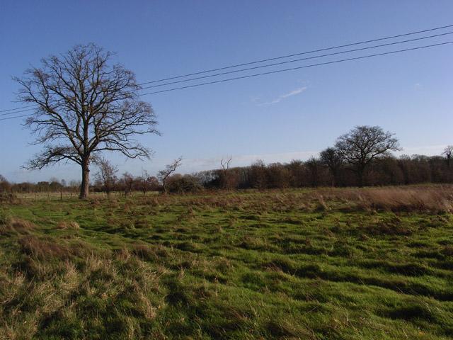 Fallow fields near Drayton