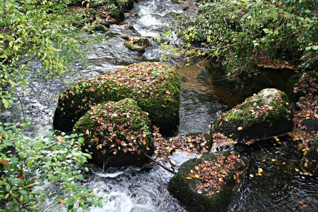 St Neot River