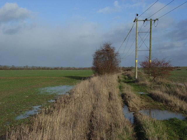 Farmland, Drayton
