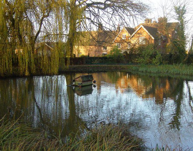 Long Sutton Pond