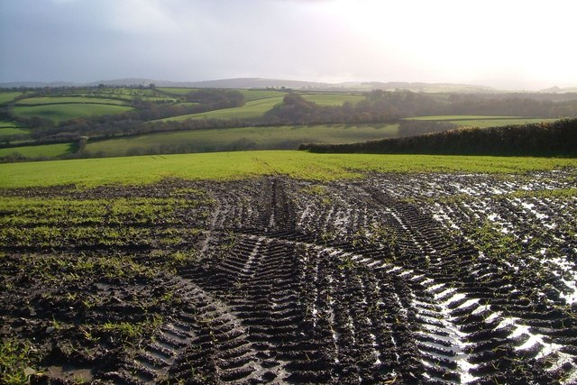 Tractor tyre marks and view