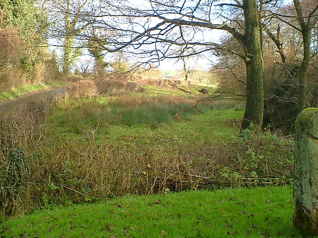 Boggy Field