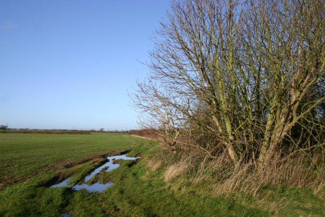 Henley Watering
