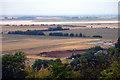 SE8722 : Alkborough Flats by David Wright
