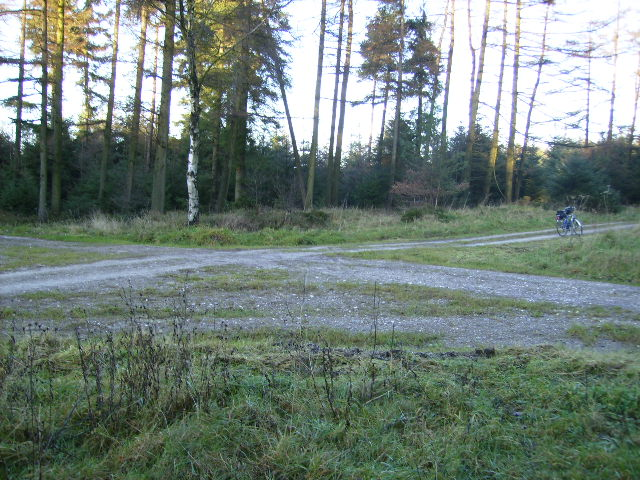 Fire Tower crossroads in Dalby Forest