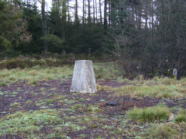 Triangulation pillar in Dalby Forest
