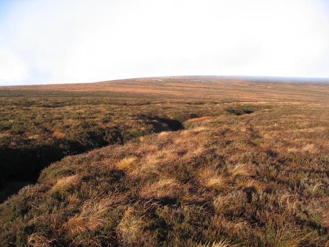 Moorland near Carter Fell