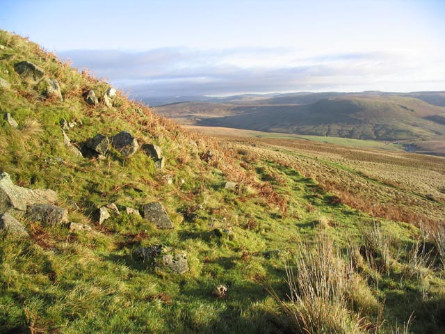 Cheviot Hill countryside