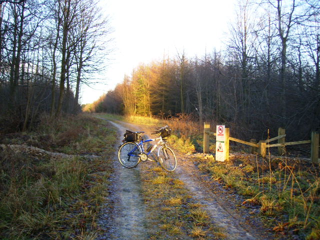 Mountain bike track junction on Hawdale Rigg in Dalby Forest