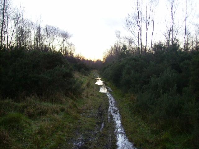 Waterlogged path on Stonygate Moor