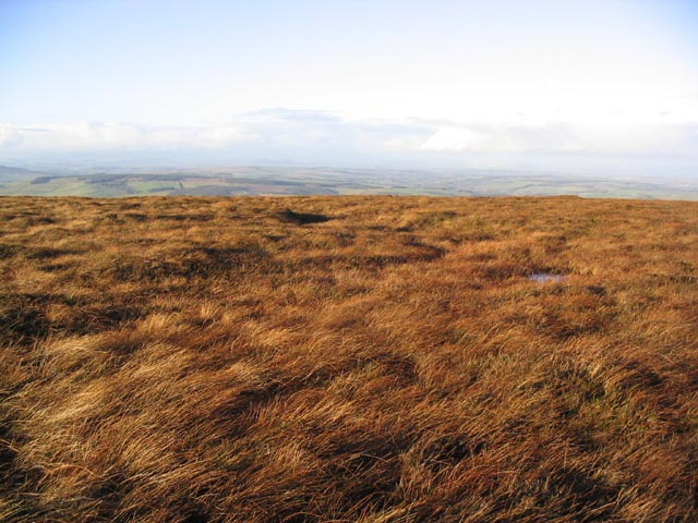 Moorland at Catcleuch Shin
