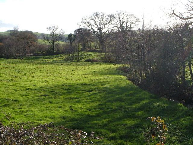 Meadow beside Fingle Brook