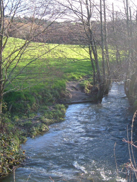 Fingle Brook