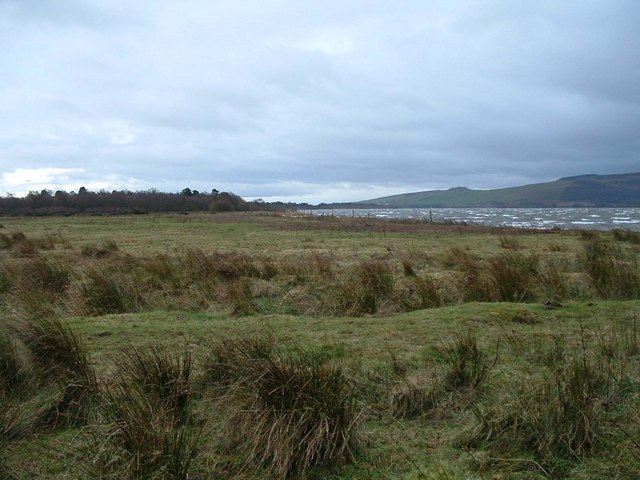 Shore and Marshland