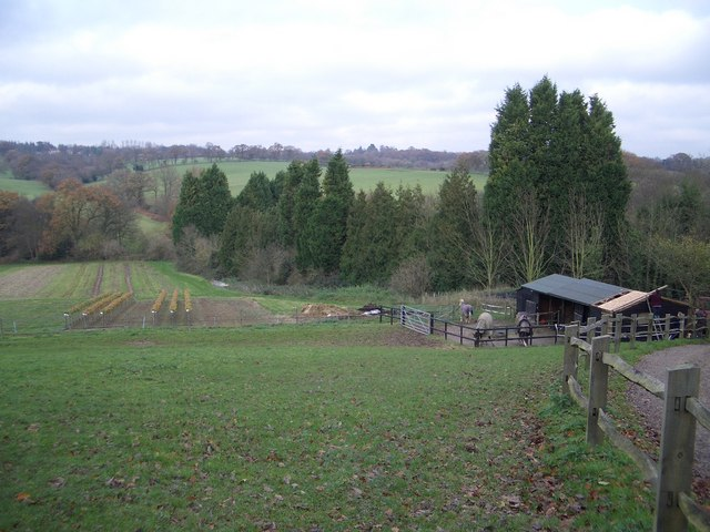 Fruit Fields & Stables at Great Park Farm near