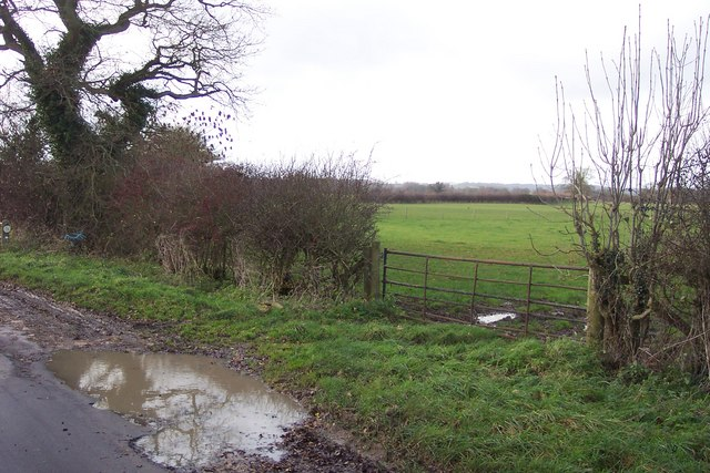 Gate and fields near Broadwell