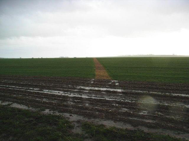 Footpath across waterlogged field
