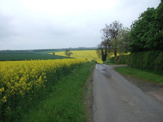 Near Burnham Beeches Farm
