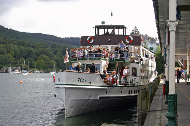 Lake Windermere, Teal about to depart