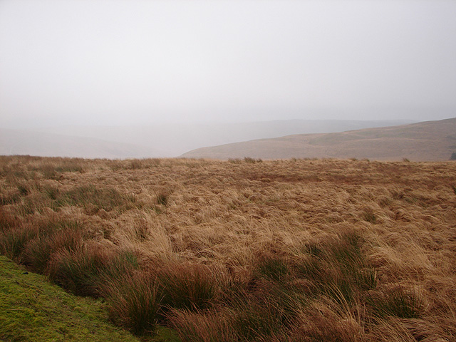 Open moorland at Esgair Saeson