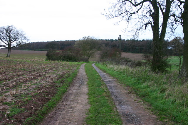 Track to Tittensor