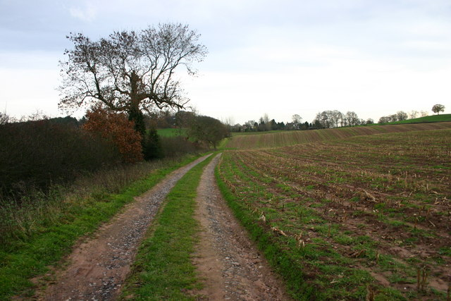 An Off-Road Route to Bury Bank