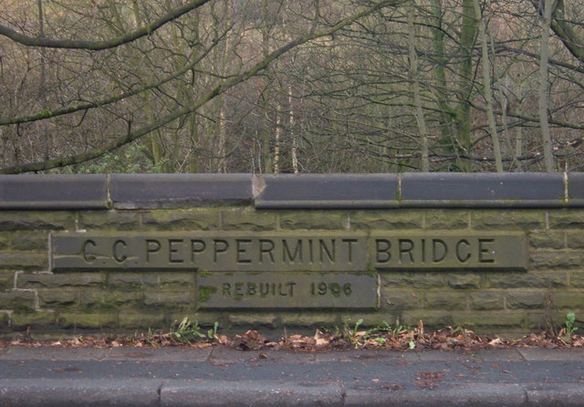 Peppermint Bridge, Newhey