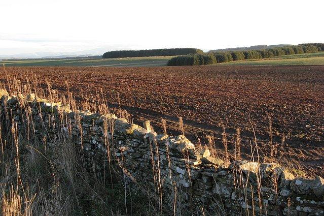 Corsbie Moor