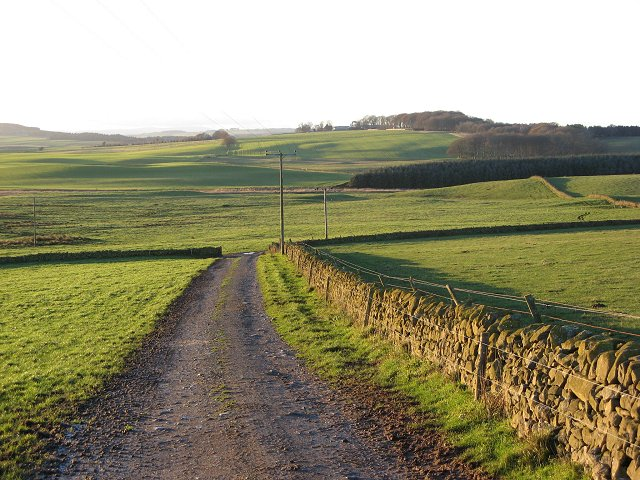 Farm track, Rumbleton.