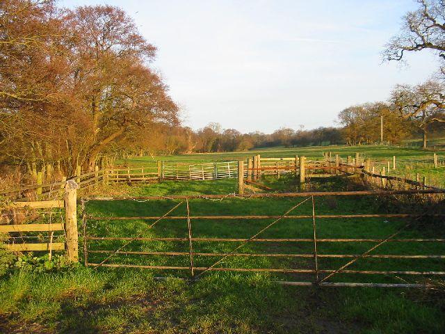 Daysclose Plantation on the Radbourne Estate