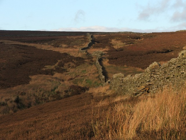 Drystone Wall on Reaps.