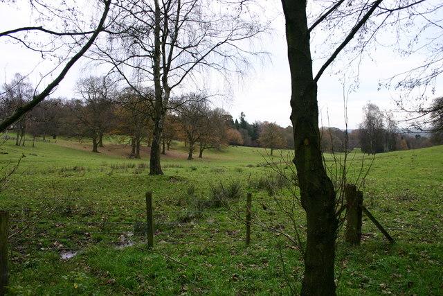 Open Parkland