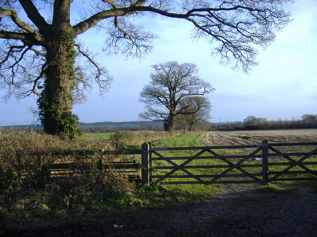 View South, from the road to Startley.