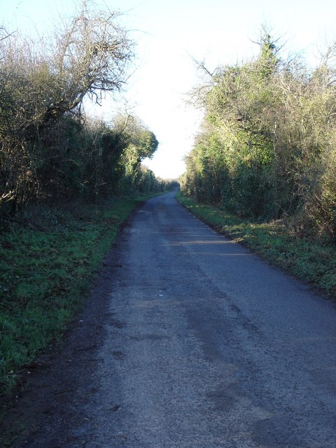 Lane from Wick to Botley's Farm