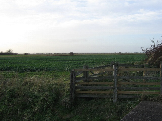 Fence And Field