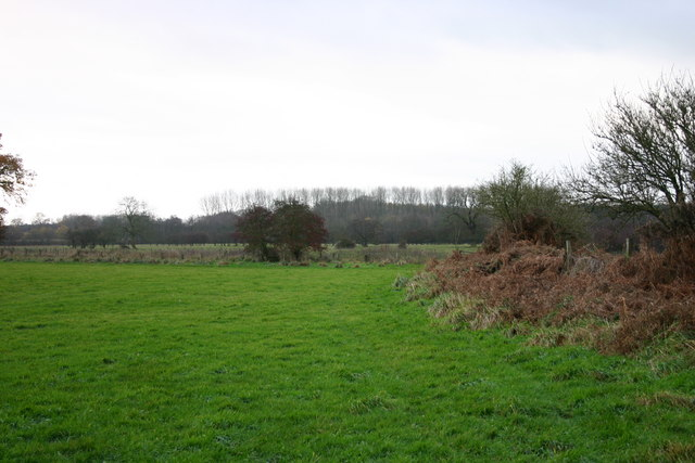 Fields from the Footpath