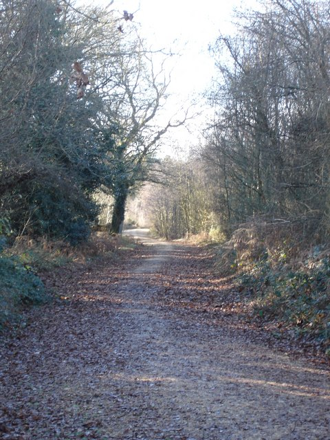 Track to North Plumley Farm