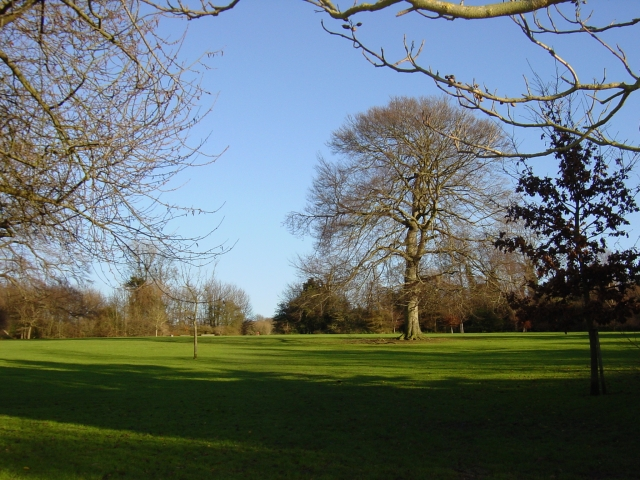 Withdean Park, looking east from the bottom