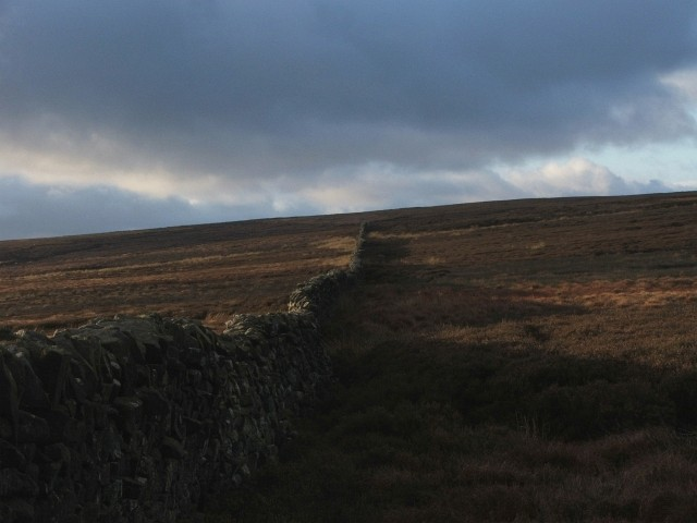 Drystone Wall up Hard Hill.