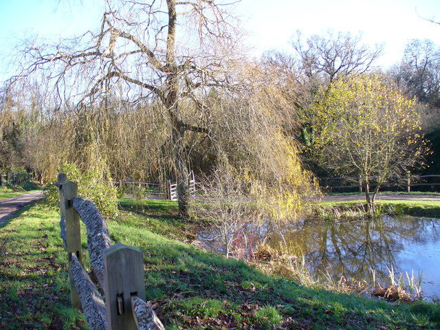 Pond at Frillinghurst