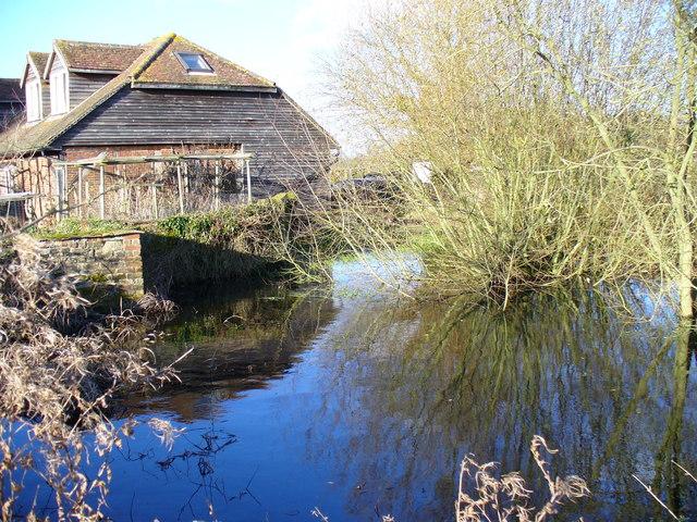 Pond at High Prestwick Farm