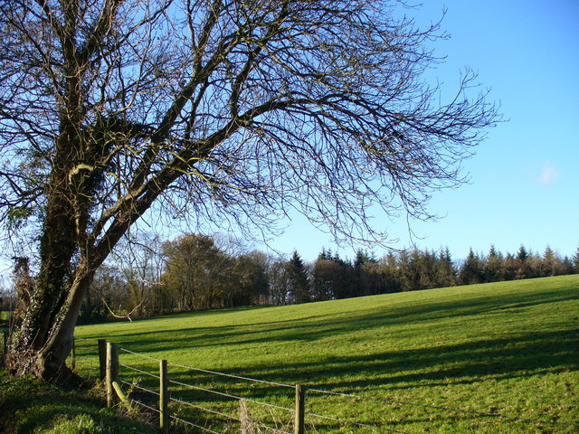 Wealden Field, Prestwick