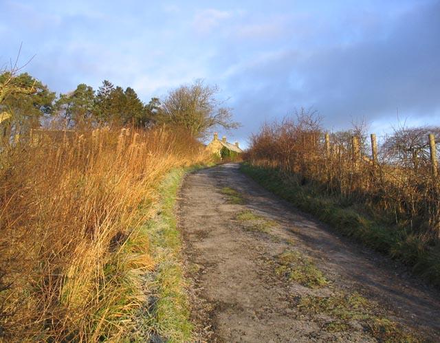The road to Whitelee Farm
