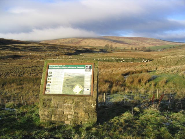 Whitelee Moor National Nature Reserve