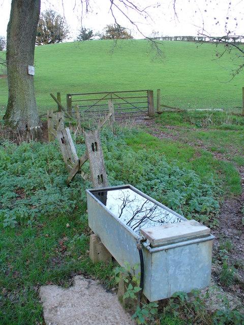 Water Trough near Nodding's Farm