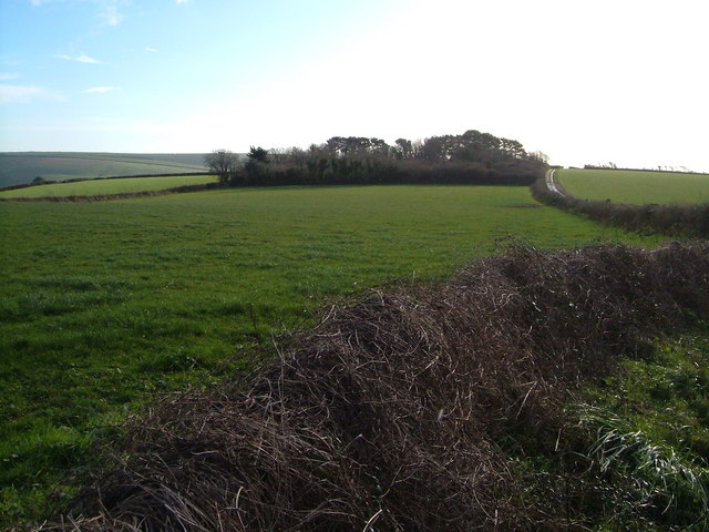 Near Battisborough