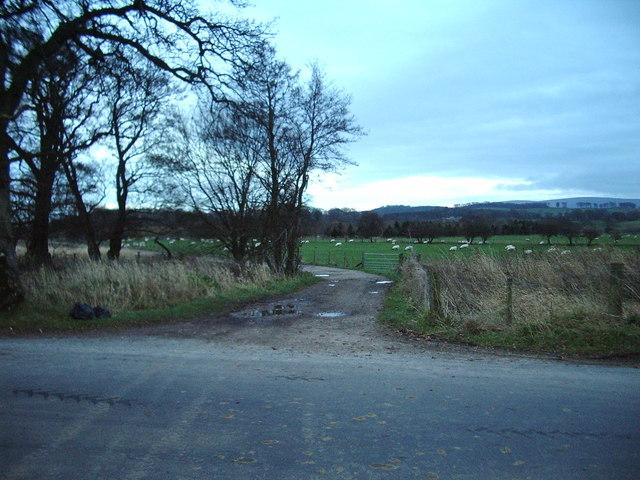 Footpath to Dovecote Bridge and High Dovecote