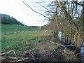 SO4114 : Afon Troddi by Jennifer Luther Thomas