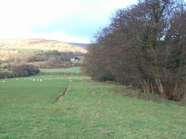 Footpath alongside Cwm-gu Brook