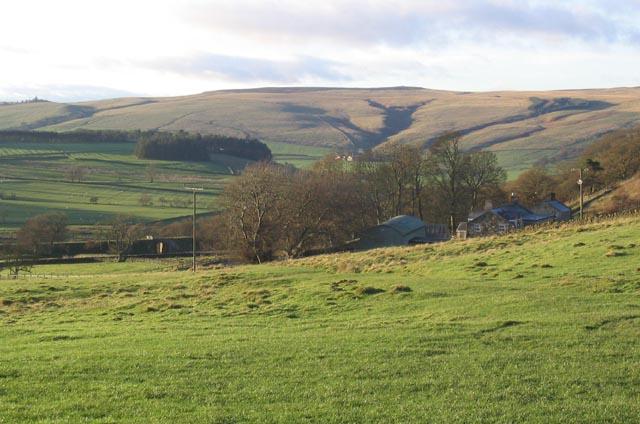 Pasture at Parkhead